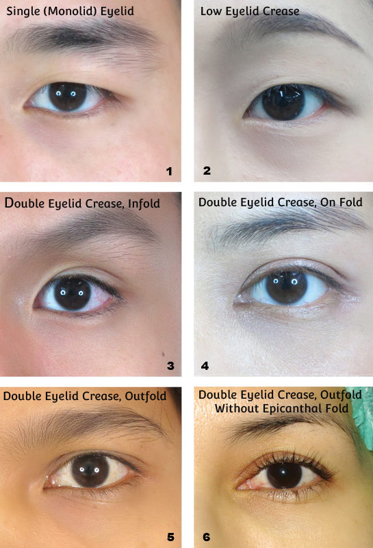 Best False Eyelashes For Asian Eyes Comprehensive Guide Minki